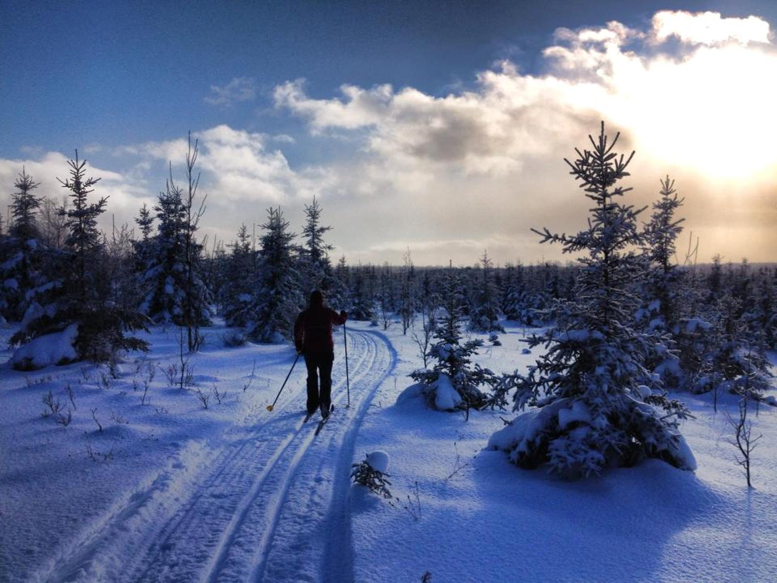 beaver valley nordic ski club – come and ski over 8 km of groomed